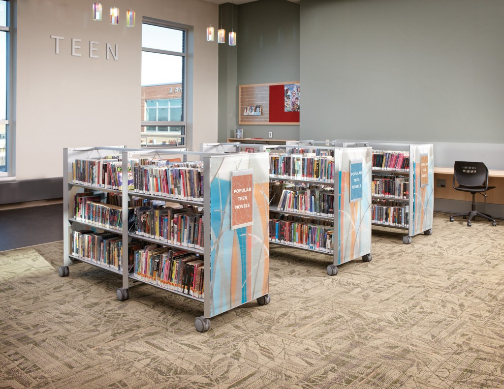St. Michael Public Library, MN